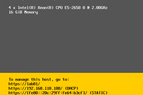 Steps-to-Configure-IP-Address-and-Hostname-in-vSphere-ESXi-7-Image-10.png